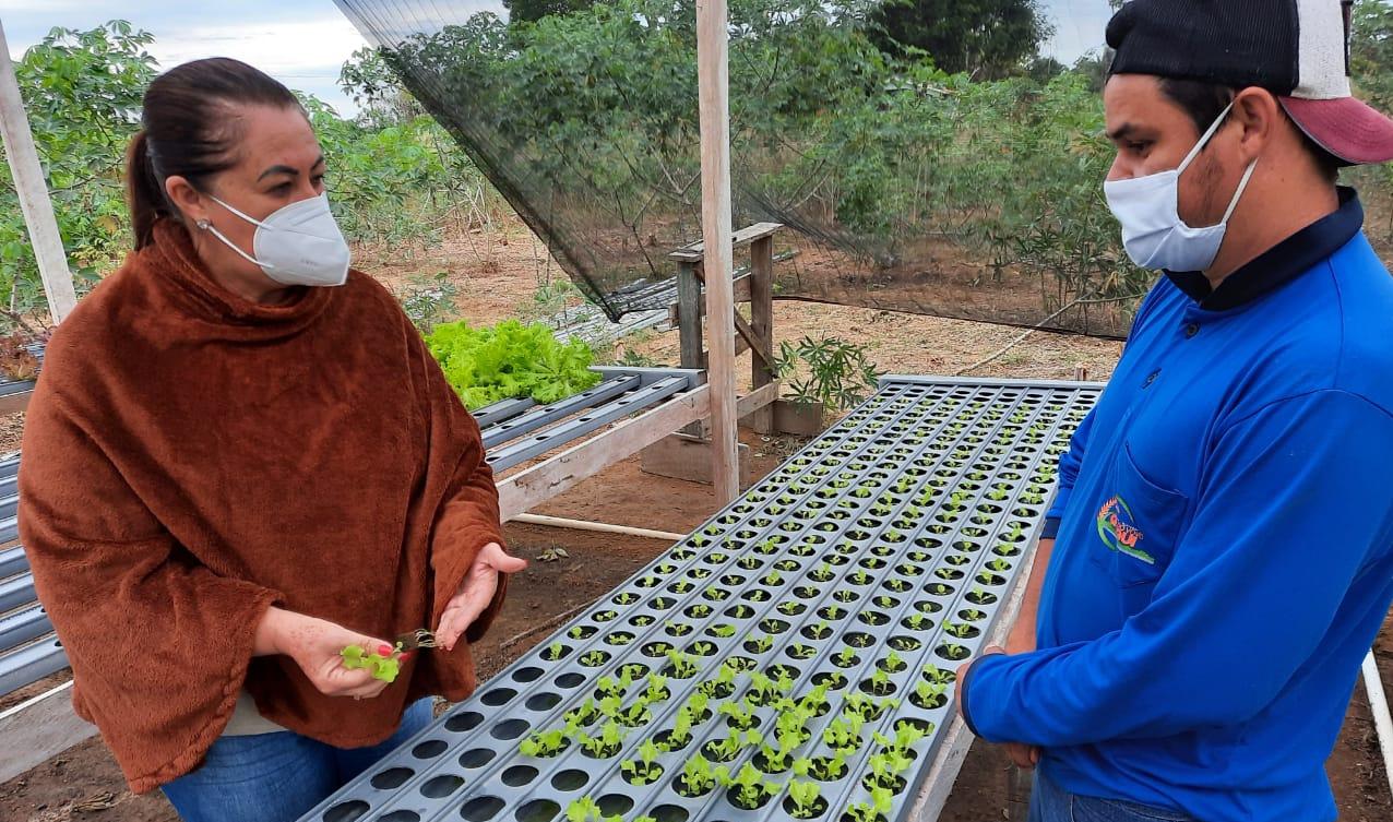 Prefeita Valéria Garcia e Elismar Ferreira durante visita de horta hidropônica em Pimenteiras do Oeste