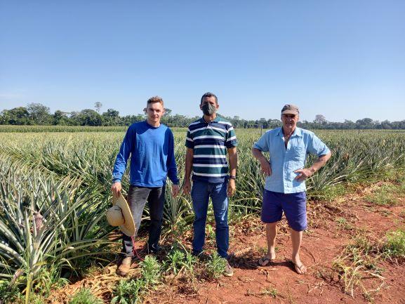 O produtor Rude e o filho Ederson. O abacaxi foi uma das alternativas para a pequena propriedade. (Foto: Rildo Costa)
