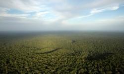 Ibama barra construção de nova usina hidrelétrica em Rondônia