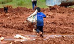 Brasil tem 1,8 milhão de crianças e adolescentes em situação de trabalho infantil