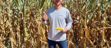 Outrora desprezado e desacreditado, milho vira o jogo e pareia com a soja em rentabilidade na região de Cerejeiras