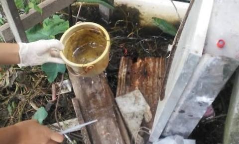 VILHENA: Levantamento da Divisão de Endemias mostra que focos de dengue estão em quintais de casas ocupadas