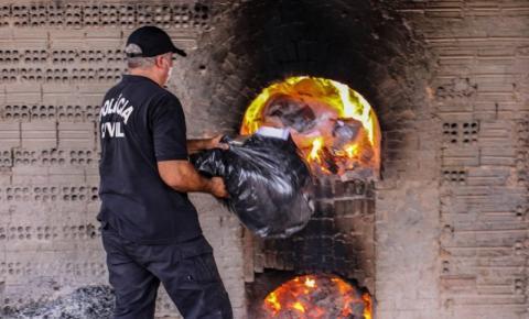 Departamento de Narcóticos incinera mais de 800 quilos de entorpecentes em Rondônia