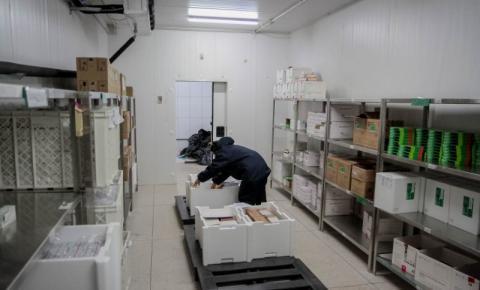 Técnicos da Agevisa realizam monitoramento das vacinas entregues nas redes municipais de frio