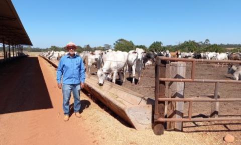 Referência na pecuária intensiva, casal de empreendedores tem meta de engordar mil bois por ano em 91 hectares de terra em Cerejeiras