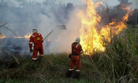 Rondônia abre 62 vagas para bombeiros civis voluntários para atuarem no combate aos incêndios florestais