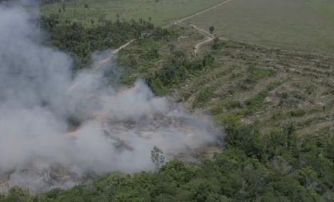 Plataforma criada em RO deve ajudar no combate a queimadas na Amazônia e no Pantanal