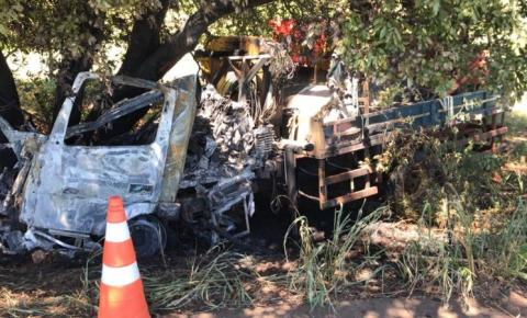 Motorista de 35 anos morre carbonizado após bater caminhão em árvore