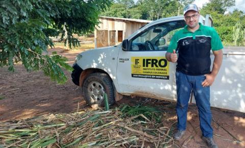 CEREJEIRAS: Comunidade Terapêutica Reviver recebe doação de mudas de Capim Capiaçú do IFRO
